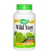 Nature's Way  野生山藥  425 mg*180顆 - Wild Yam Root