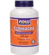 NOW Foods 紫錐花 ( 紫錐菊) 400 mg* 250顆~Echinacea Purpurea Root